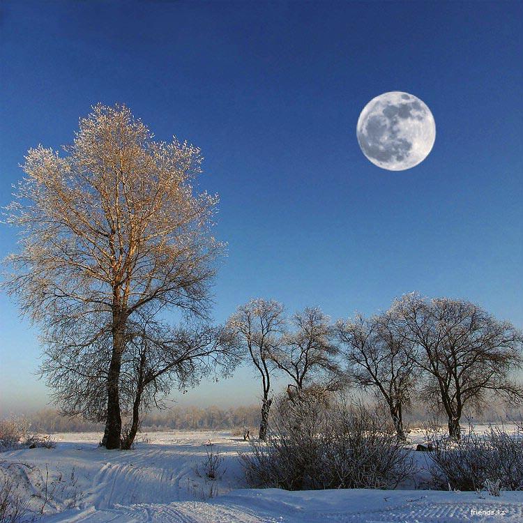 Луна, мороз