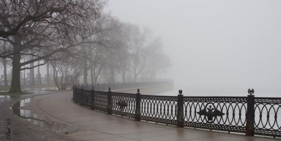 Туман, река, орлы